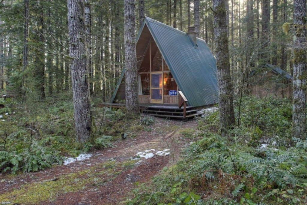 Check Out This Awesome Listing On Airbnb Wooded Paradise