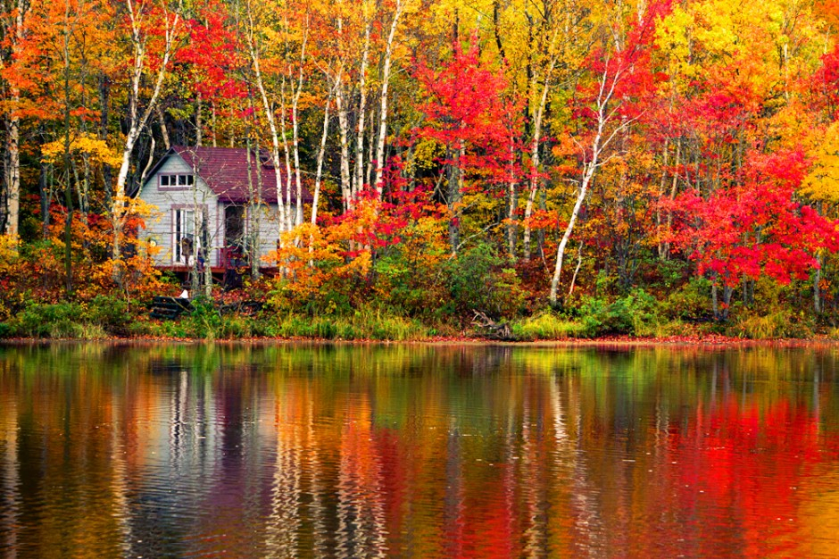 Forget New England Fall Foliage In New Brunswick Canada
