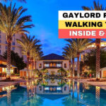 Gaylord Palms Resort  Convention Center Raw Walking