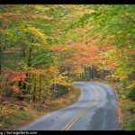 Picture/Photo Fall Foliage And Road Near Entrance Of