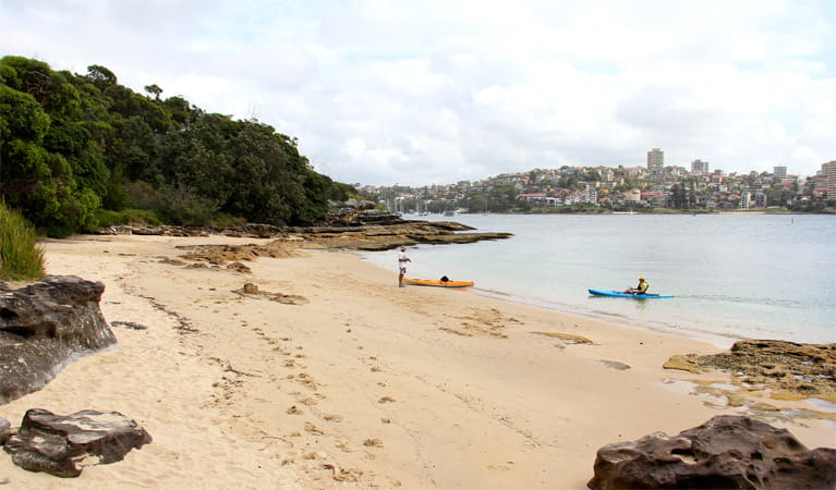 Reef Beach  Nsw National Parks
