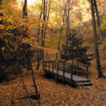 Starved Rock State Park  State/Provincial Park In