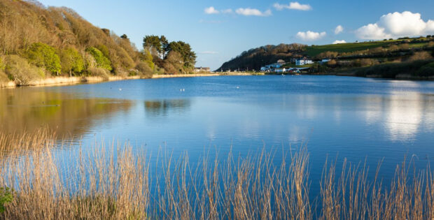 Swanpool Nature Reserve  Country View Cottages