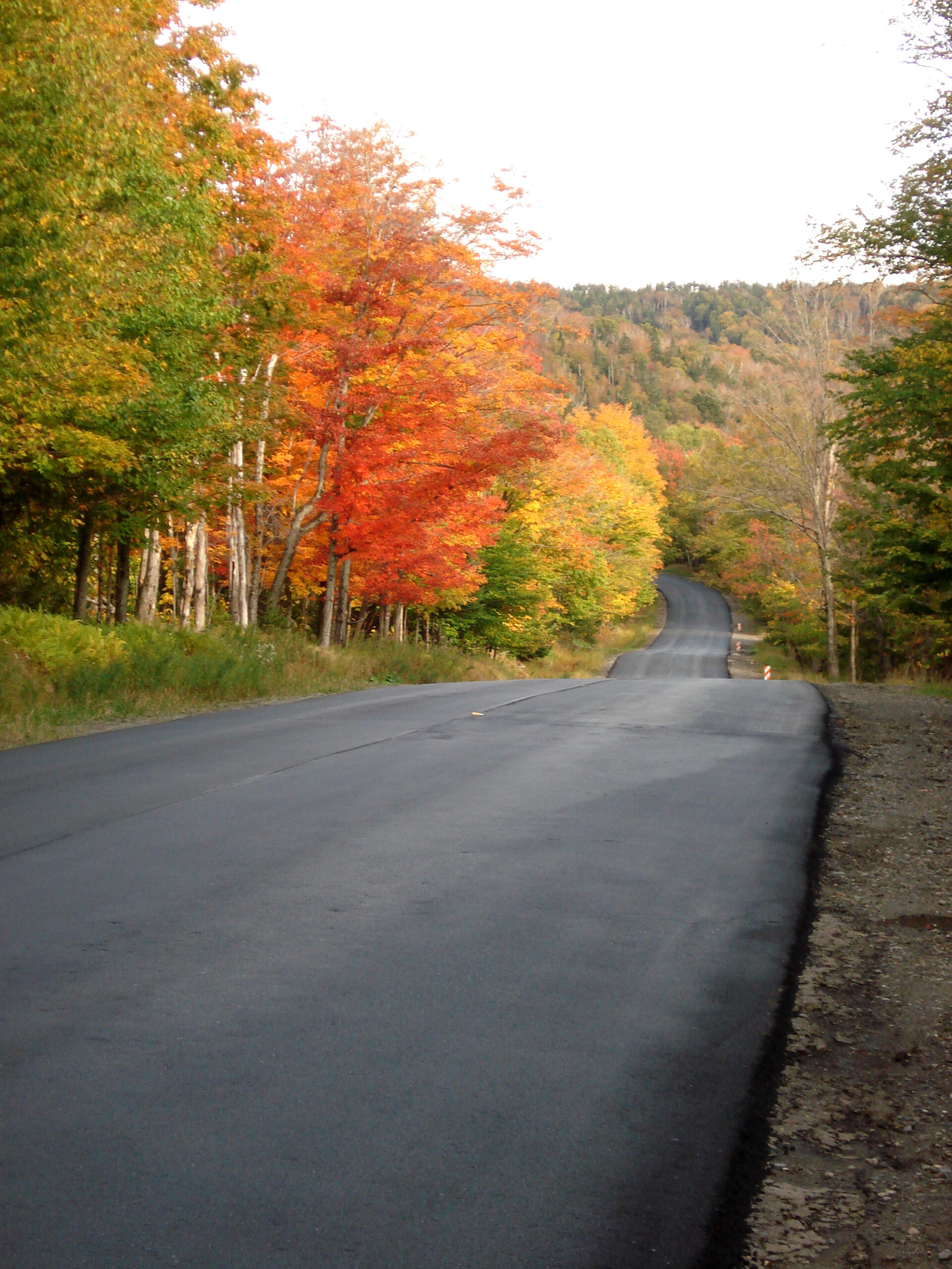 Top 4 Fall Foliage Drives In Maine  Mainetoday