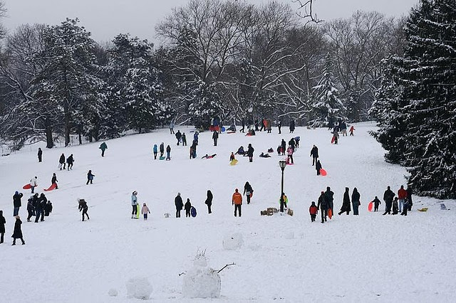 Top Places To Go Sledding Or Snowshoeing And Enjoy Hot