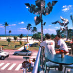 Best Rooftop Bars In Miami  South Beach Magazine