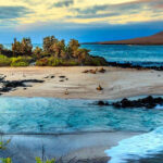 Budget Galapagos Islands Travel Guide  8 Ways To Save