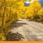 Fall Color Scenic Drives Near Mammoth Lakes  Youtube