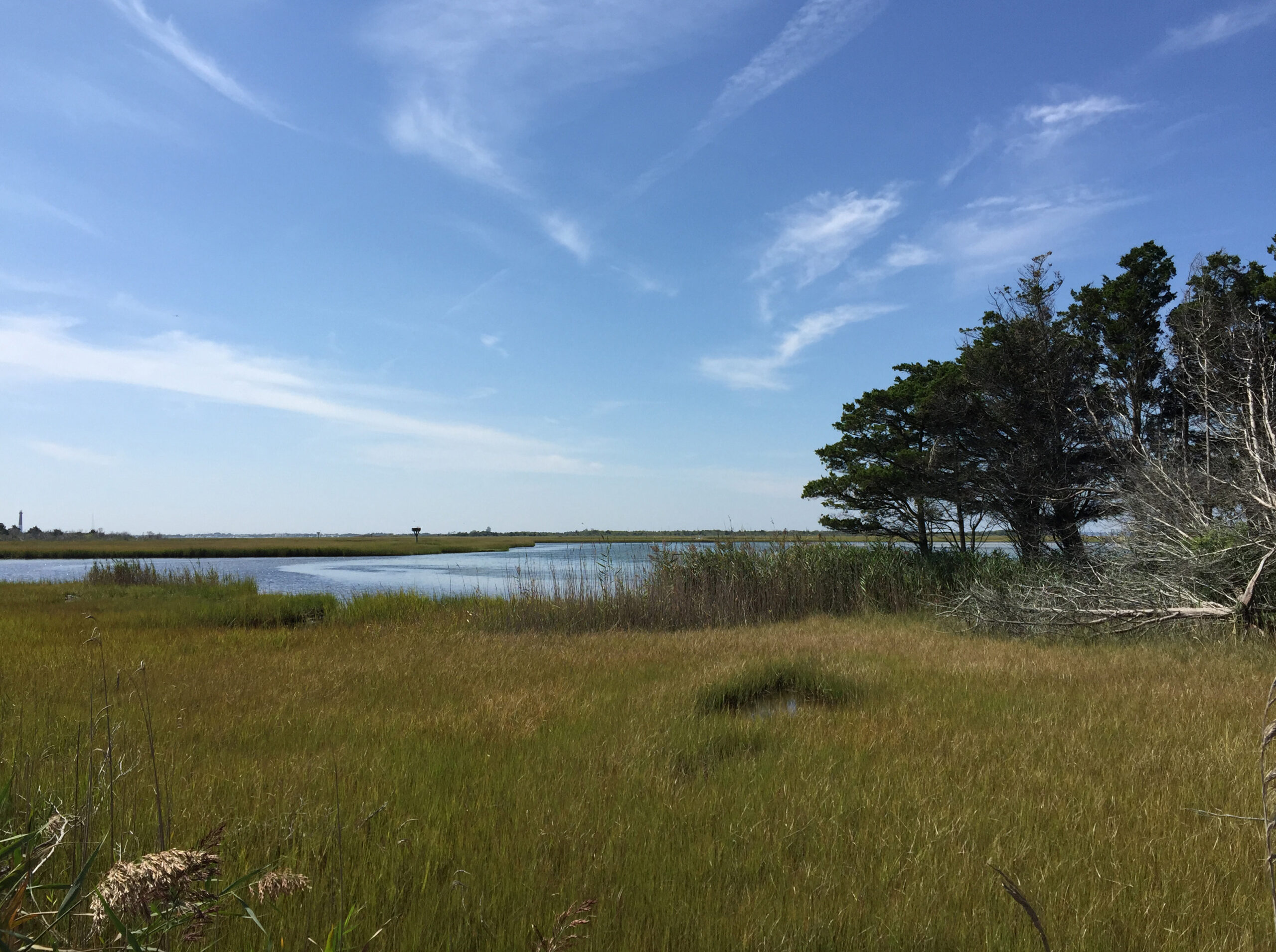 File20170904 12 15 34 View Southwest Across Marshes
