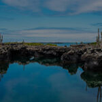 Galapagos Islands Sustainable Travel  Ecotourism