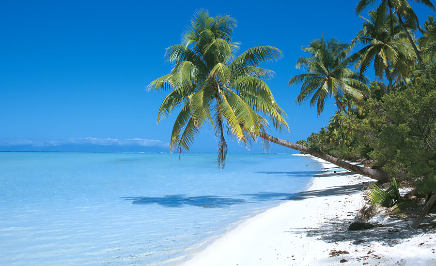 Have You Thought Of Visiting The Beautiful Islands Of The