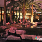 Hilton Grand Vacations At The Flamingo  Fitness Center In
