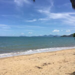 Palm Cove Beach  2020 All You Need To Know Before You Go