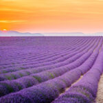 The 50 Most Beautiful Places In The World  Condé Nast