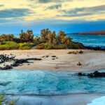 The Galapagos Islands Travel Guide