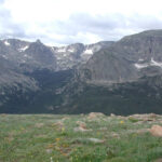 The Phytophactor Alpine Tundra In The Rocky Mountains
