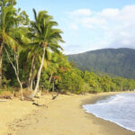 Visit Palm Cove On A Trip To Australia  Audley Travel