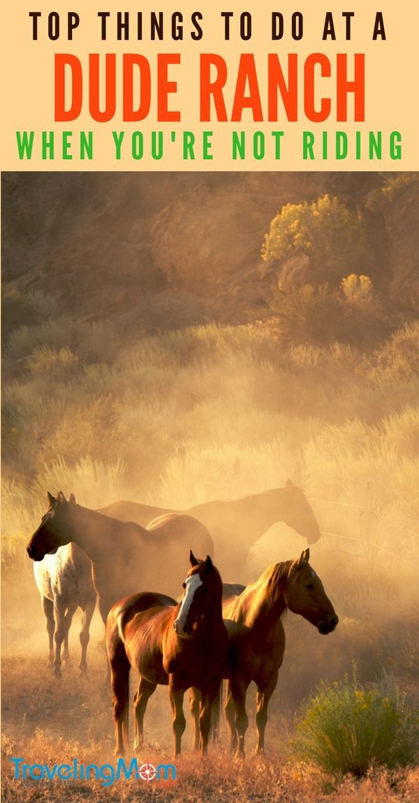 Wyoming Dude Ranch  Things To Do If You'Re Not Riding