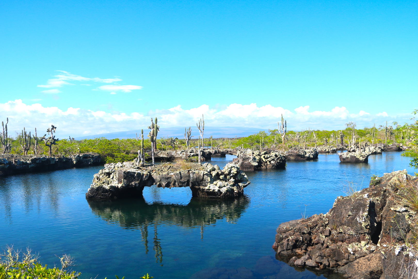 7 Reasons Why You Should Visit Isabela Island In The