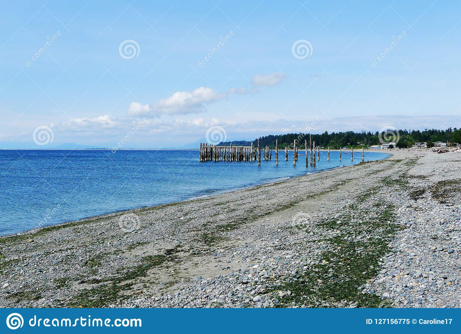 Beach View Of Whatcom County Park Stock Image  Image Of