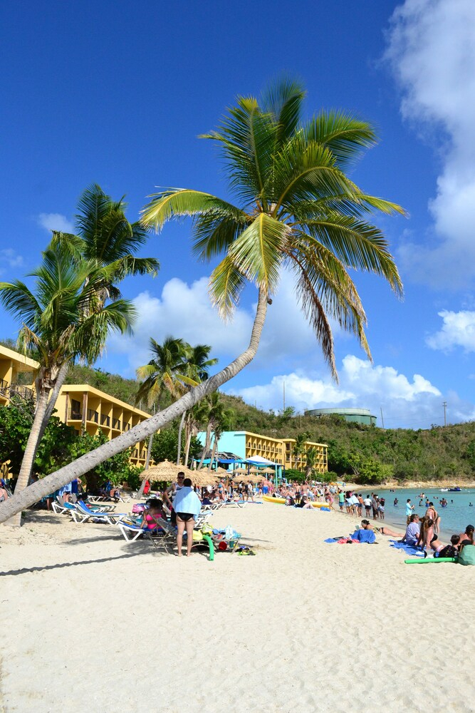 Emerald Beach Resort In St Thomas  Hotel Rates  Reviews