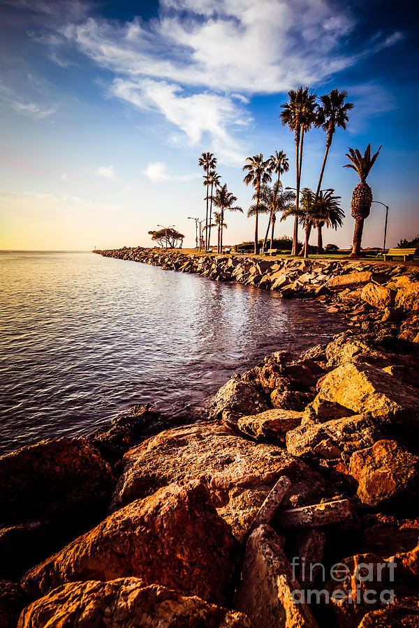 Newport Beach Jetty Picture At Jetty View Park Photograph