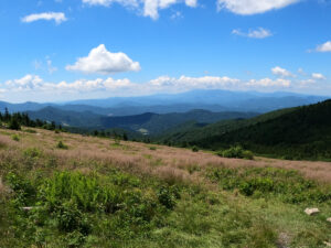 Destination Vacation Roan Mountain  Wjhl  Tricities