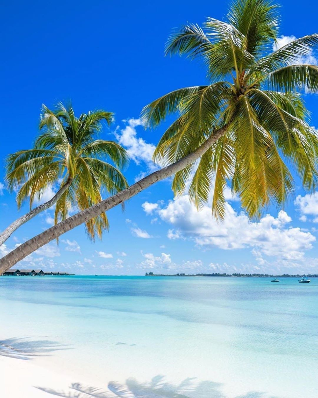Top 10 Most Beautiful Beaches In The World With Images